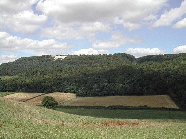 White horse , above Kilburn