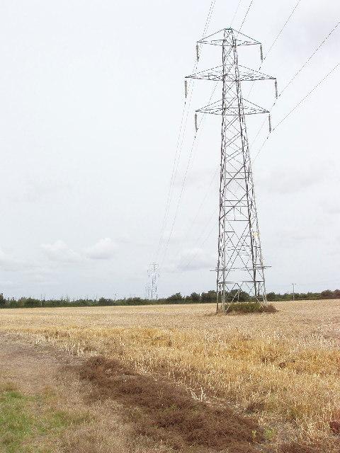 Pylons cross a corn field, by Longwick