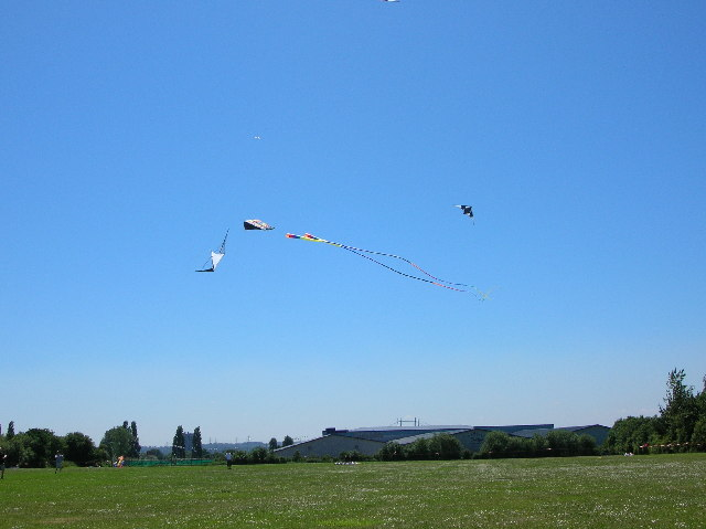 Kites near tennis centre