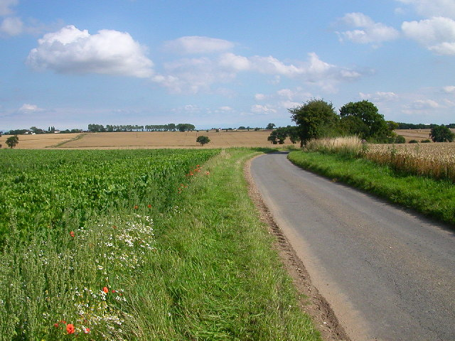 Unfenced Road between Strumpshaw and Cantley