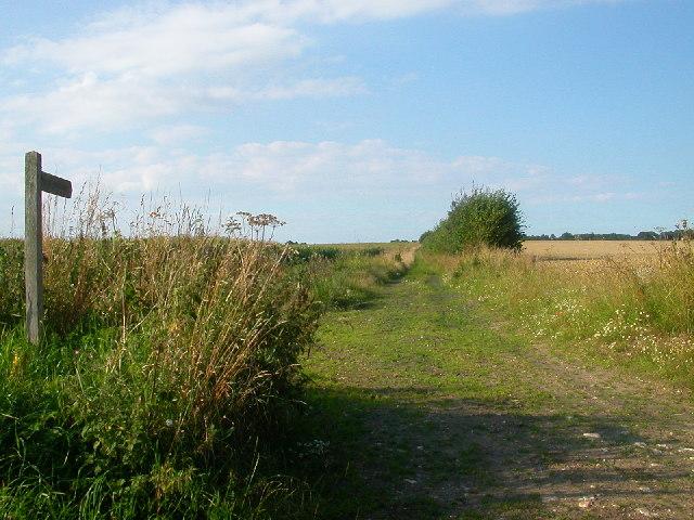Road used as a Public Path, Buckenham