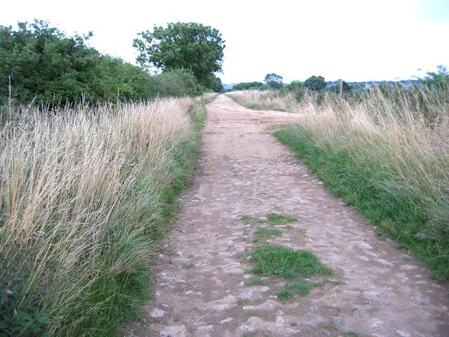 Toft's Lane, near Eaton, Leicestershire