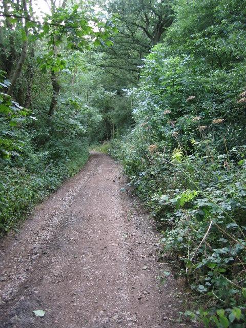 Toft's Lane, on Stathern Hill