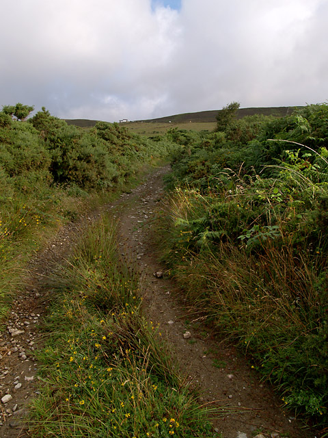 Lanjaghan Lane .   Isle of Man