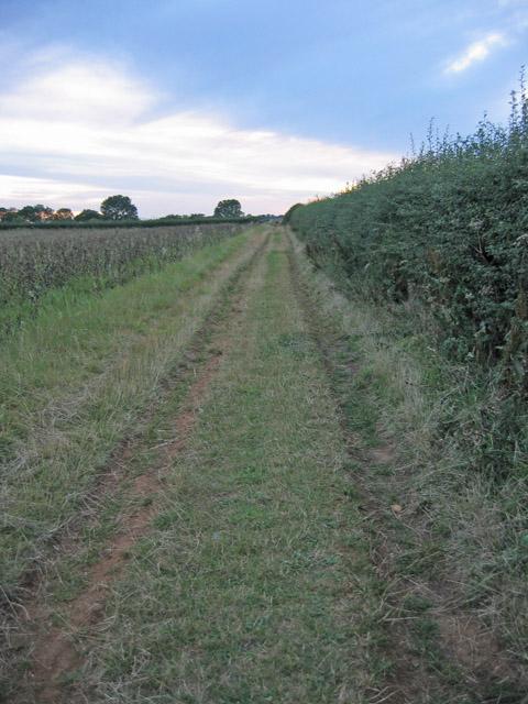Farm track near Branston
