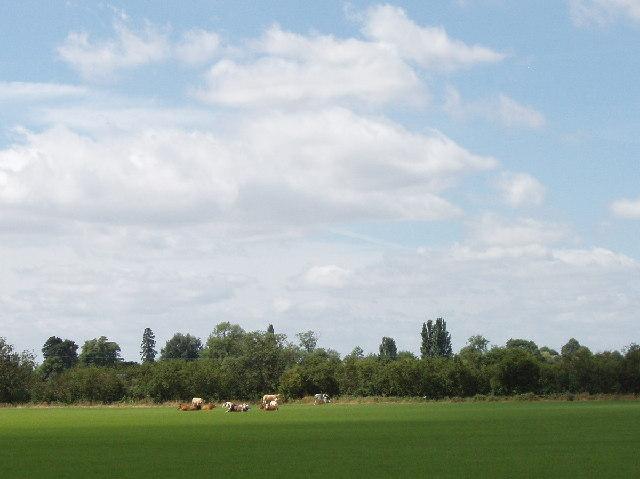 Grange Farm, Towersey