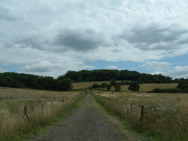 Barn Hill and Barn Hill Wood