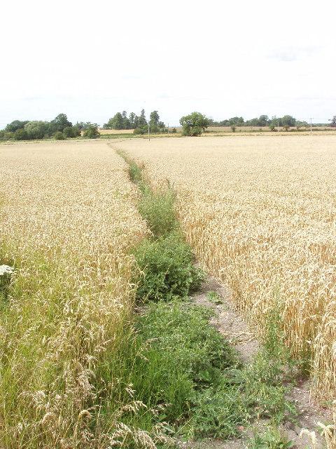 Footpath to Emmington