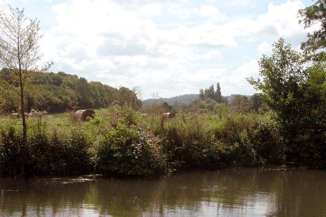 Harvesting beside the River Avon, near Saltford.