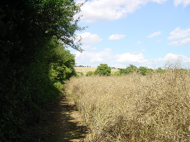 Len Valley Walk approaching Lenham