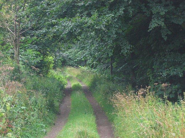 Estate road, Dalmeny.