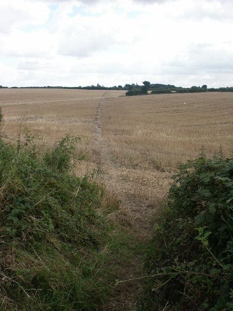 Footpath and fields, Rackheath