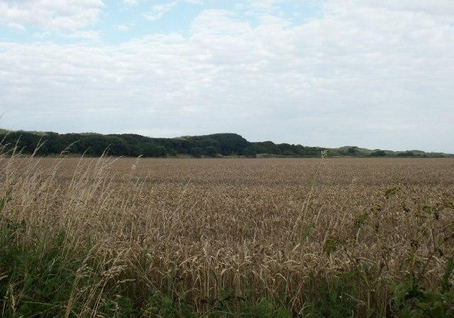 Waxham Hills