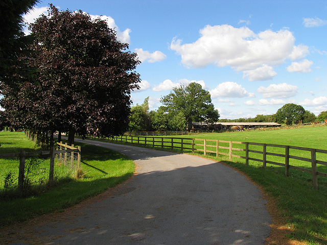 Fir Tree Farm