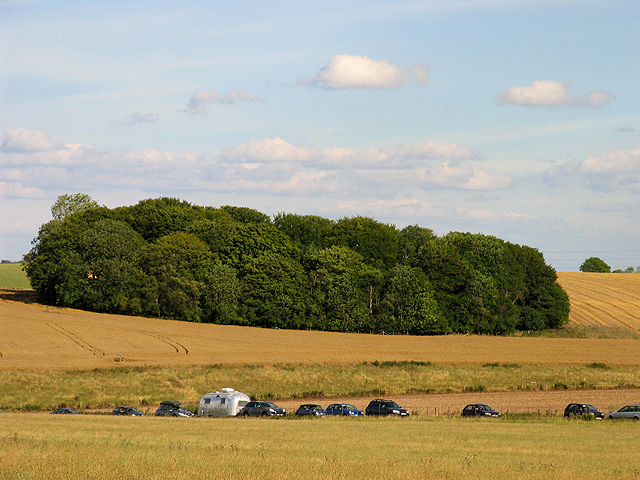 Farmland and Copse South East of Stonehenge
