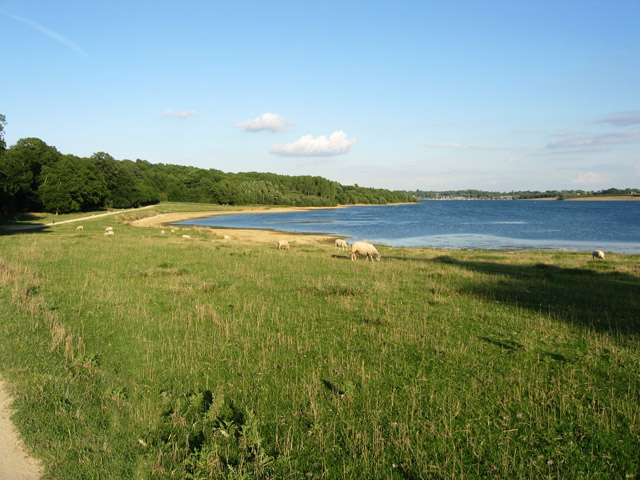 Hambleton Peninsula, Rutland Water