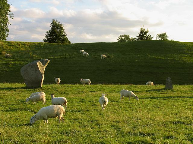 Pasture at the Remains of Avebury Stone Circle
