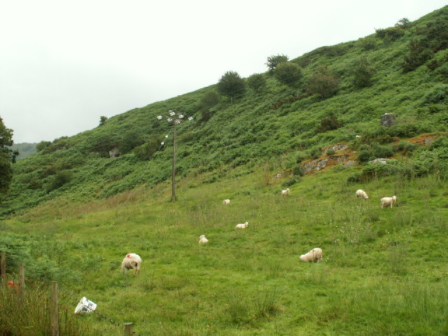 Hillside near Eglwys Fach