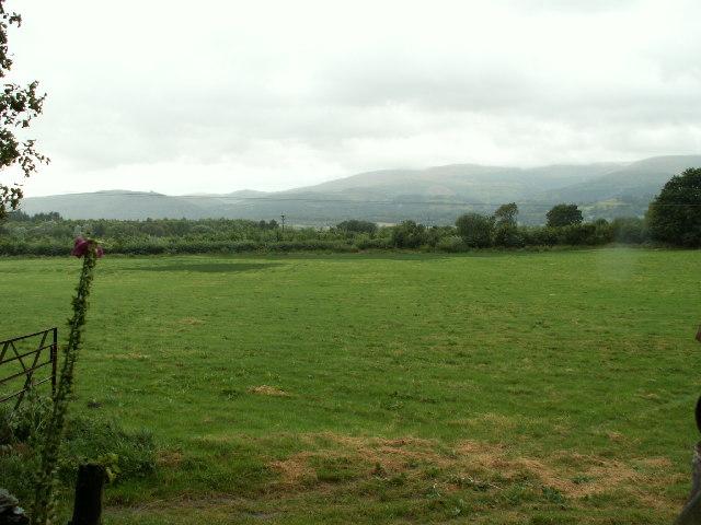 Meadow near Glandyfi