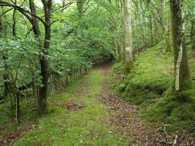 Trackway, Glanmerin