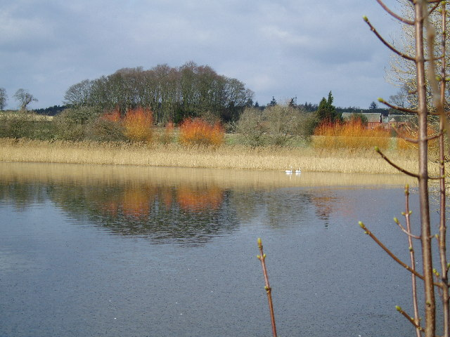 The Lake, Hirsel Estate, Coldstream