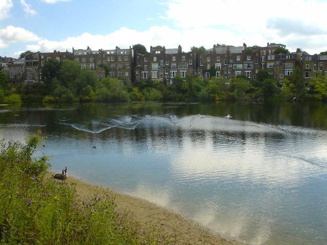 Hampstead Number 1 pond