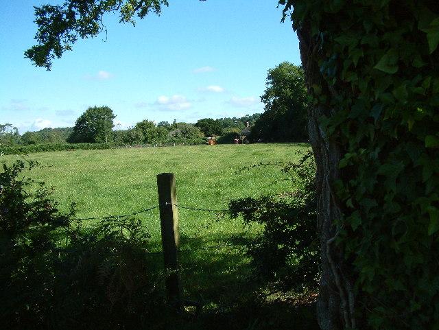 North Ripley, south of Ringwood