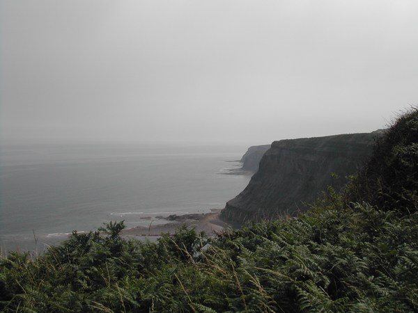 Cliffs near High Hawsker