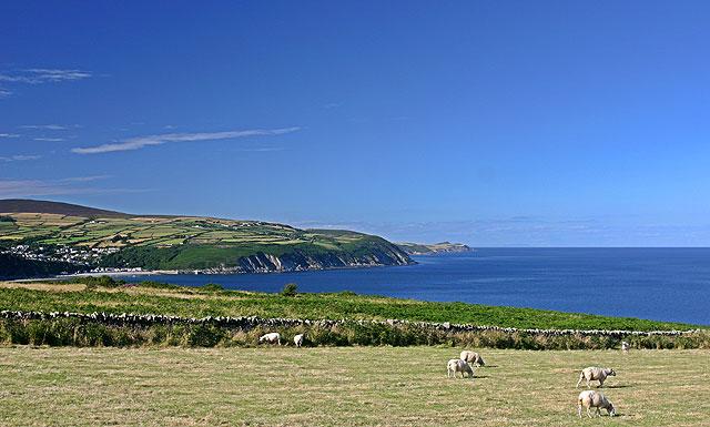 Pastures near Clay Head