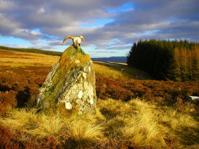 Cup-Marked monolith, Boltachan, Glassie, Strathay