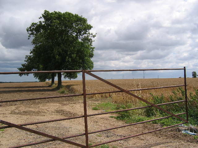 Farmland near Wawne
