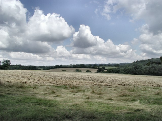 Field NE of Sonning Common