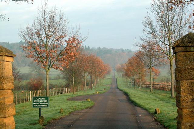 Arboretum Drive