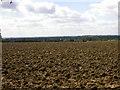 TL0853 : Freshly Ploughed Field by Kokai