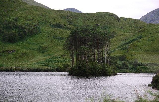 Islet on Loch Eilt