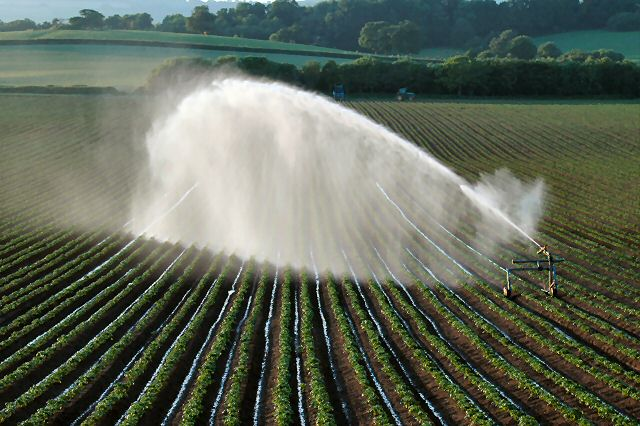 Irrigating fields SW of Killerton Estate (NT)