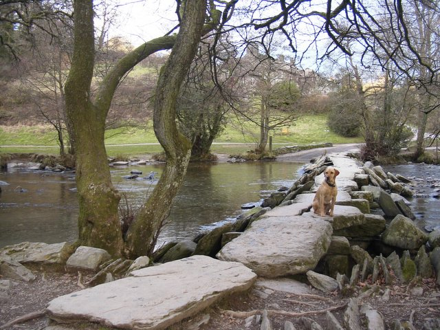 Tarr Steps - an ancient clapper bridge