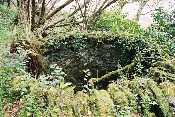 Old Limekiln by Embelle Wood Beach