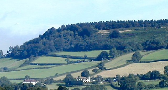 Harpford Common, Sidmouth
