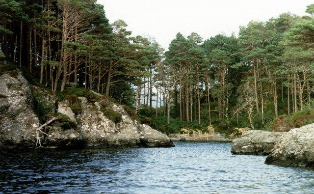 Island on Loch Morar