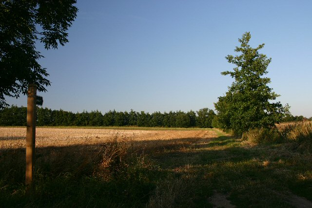 Footpath to Frogs Hall