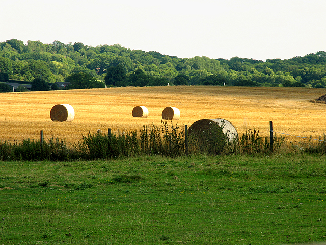 Farmland near Curridge