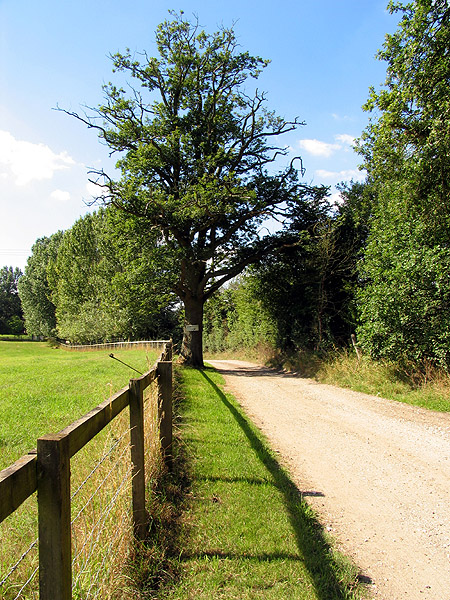 Crabtree Lane and Farmland