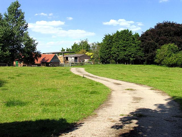 Farmland near Curridge: Lanolee Farm