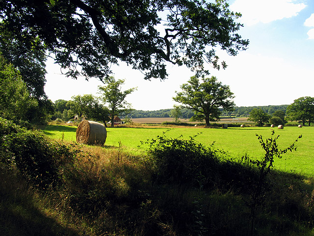 Bales on Farmland near Curridge