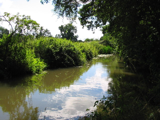 The Holy Brook, Calcot