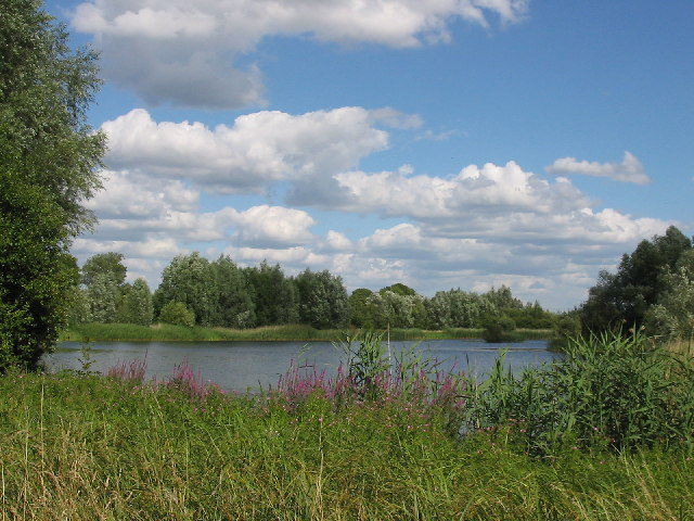 Small Lake, beside the Burghfield Mill