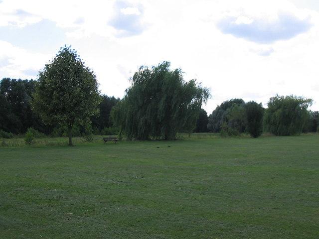 Linear Park, Calcot