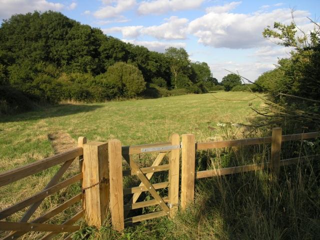 A Field near Brill