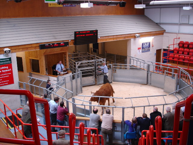 Dingwall Auction Market